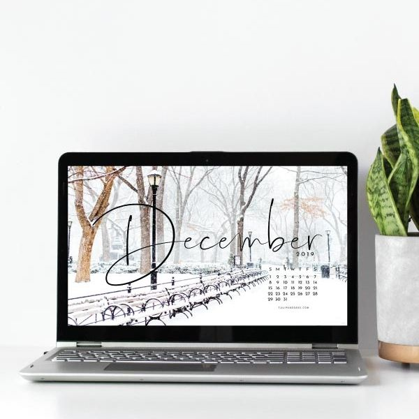 Looking to refresh your screens for next month? Grab our December 2019 Desktop Wallpaper! Did I mention it's free to download?! #digitalwallpaper #desktopwallpaper #decemberwallpaper #freedownload #freebies