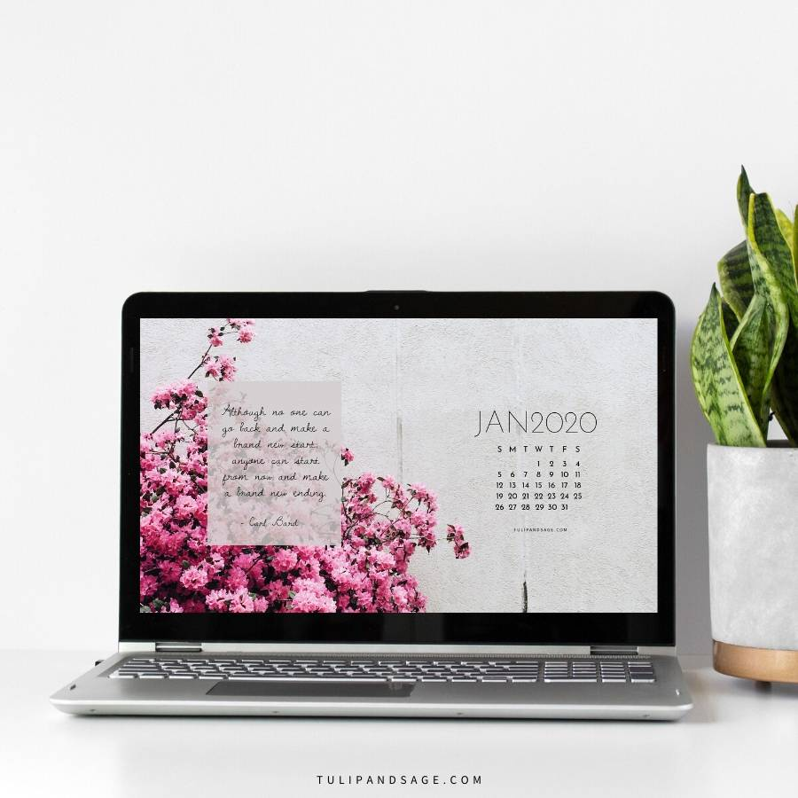 Looking to refresh your screens for next month? Grab our January 2020 Desktop Wallpaper! Did I mention it's a freebie?! #digitalwallpaper #desktopwallpaper #decemberwallpaper #freedownload #freebies