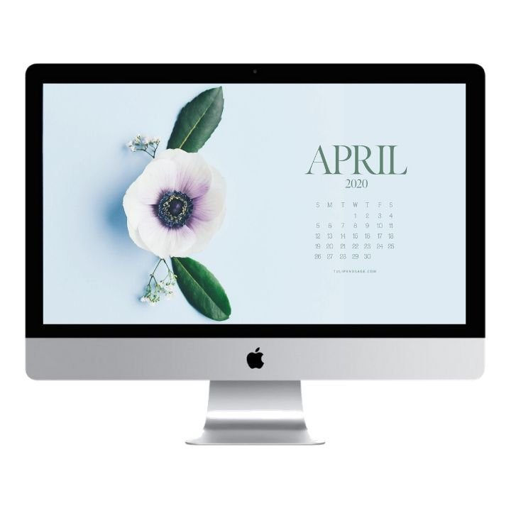 Are you looking to refresh your screens for next month? Grab our April 2020 Desktop Wallpaper! Did I mention it's a freebie?! #digitalwallpaper #desktopwallpaper #aprilwallpaper #freedownload #freebies