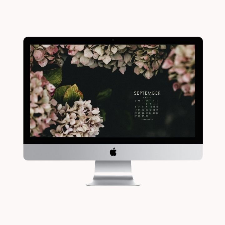 Hello September!  Are you looking to refresh your screens this month? Grab our September Desktop Wallpaper! Did I mention it's a freebie?! #digitalwallpaper #desktopwallpaper #septemberwallpaper #freedownload #freebies