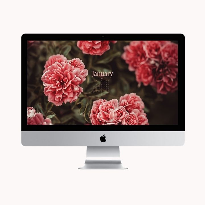 Hello January! Are you looking to refresh your screens this month? Grab our January Desktop Wallpaper! Did I mention it's a freebie?! #digitalwallpaper #desktopwallpaper #januarywallpaper #freedownload #freebies